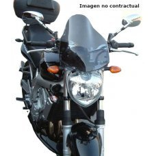 CARENABRIS NAKED NEW GENERATION FZ6 04-07 TRANSPAR